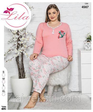 LILA пижама женская на байке БАТАЛ Турция (2XL)4562, фото 2