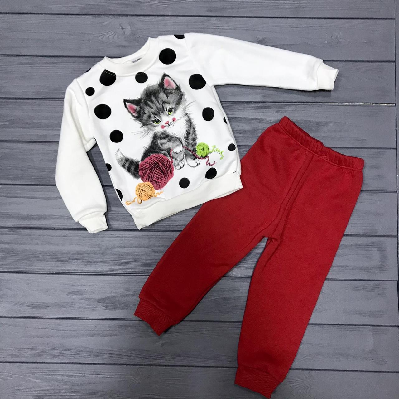 Детский костюм  тёплый на флисе для девочек оптом р.4 и 6 лет