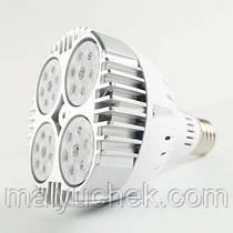 Світлодіодна фіто лампа для рослин DIY ELECTRONIX E27 45W Nano space full spectrum NSFS - 45