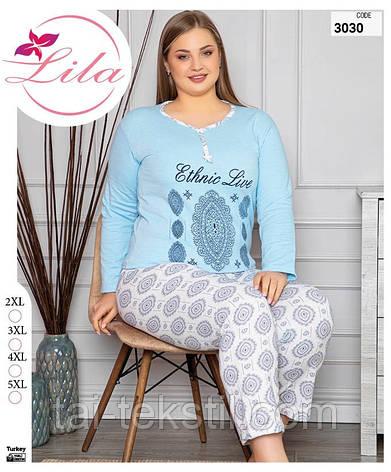LILA пижама женская на байке БАТАЛ Турция (2XL-5XL)3030, фото 2