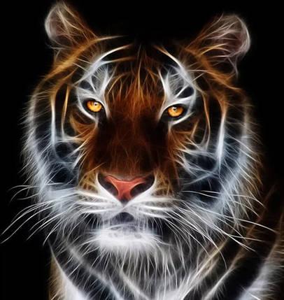 """Набор для творчества алмазная мозаика """"Желтоглазый тигр"""", 30*40 см, без рамки, H8065, фото 2"""