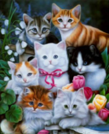 """Набір для творчості алмазна мозаїка """"Кошенята"""", 30*40 см, без рамки, H8361, фото 2"""