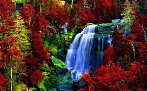 """Набір для творчості алмазна мозаїка """"Лісові водоспади"""", 30*40 см, з рамкою, H8646"""