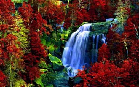 """Набір для творчості алмазна мозаїка """"Лісові водоспади"""", 30*40 см, з рамкою, H8646, фото 2"""