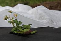 Агроволокно PLANT PROTEX 16225, 23 гр/м.кв, 3.2x100 м