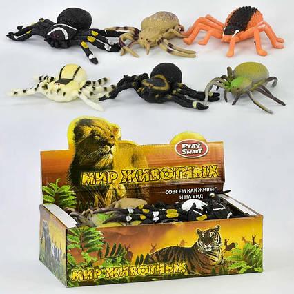 Іграшка-антистрес Павуки 7427 (36) ЦІНА ЗА БЛОК / 24шт в блоці, 8 видів
