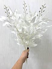 Декоративная ветка рускус белый ( 50 см ), фото 2