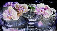 Кухонный фартук-панно Грейс 1002*602 мм - Орхидея на камне