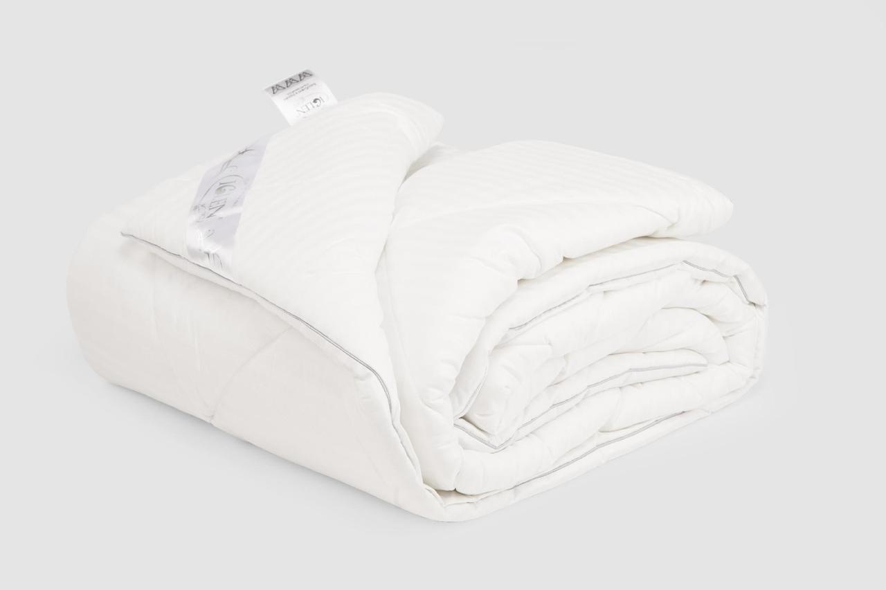 Одеяло IGLEN FD гипоалергенное Зимнее 220х240 см Белый (220240FD)