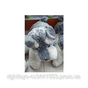 Мягкая игрушка T15-61-4 (300шт) собака, шнауцер, 23см