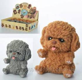 Животное A186-DB (120шт) собака, 7см, 24шт(2цвета) в дисплее, 32-9,5-18,5см