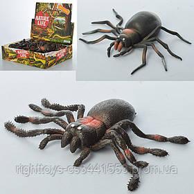 Насекомое A123-DB (96шт) паук, 11см, 24шт(2 вида) в дисплее, 30-23-7,5см