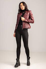 Яркая короткая куртка-пиджак в цветах вишня и красный в 4 размерах: S, M, L, XL.