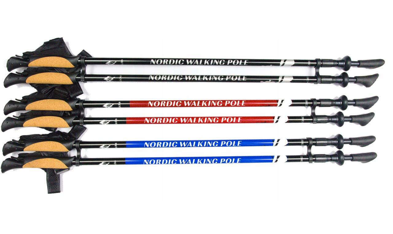 Палки для скандинавської ходьби Nord Sticks Чорні  2 секційні
