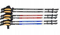 Палки для скандинавської ходьби Nord Sticks Чорні  2 секційні, фото 1