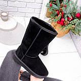 Угги женские Pellim черные 2614, фото 10