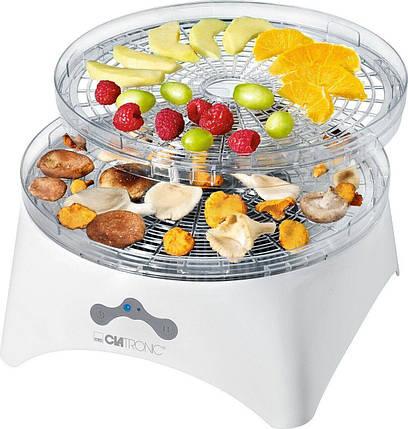 Сушка для фруктов и овощей Clatronic DR 3525 300 Вт, фото 2
