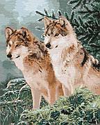 Картина по номерам Идейка Волчий взгляд 40*50 см (в коробке) арт.KH4191