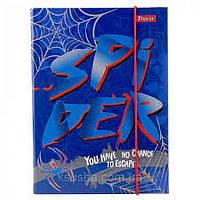 Папка для зошитів В5 на гумці картонна 1ВЕРЕСНЯ Spider