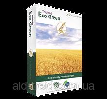 Бумага Eco Green Trident А4 75 г/м (класс C) *при заказе от 5 пачек