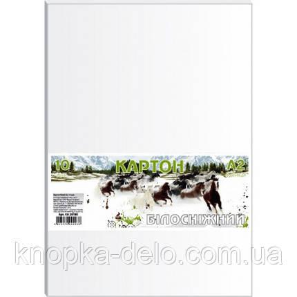 Картон білосніжн., набір 10арк., А2, в п/п пакеті КА2010Е, фото 2