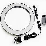 Кольцевая лампа для предметной съемки 26 см светодиодная со штативом 210 см. и с держателем для телефона, фото 8