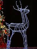 Новогодний 3D Led Олень в Наличии Высота 160см, фото 4