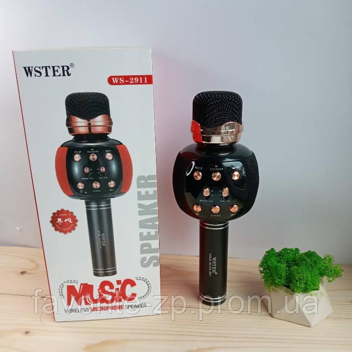 Беспроводной микрофон для караоке DM Karaoke WS 2911 BLACK