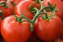 Насіння томату середньостиглий детермінантний Зореслав сорт червоний круглий полуштамбовый упаковка 10 грам