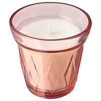 VÄLDOFT ВЕЛЬДОФТ Свічка ароматична у склянці - суниці лісові/темно-рожевий - IKEA