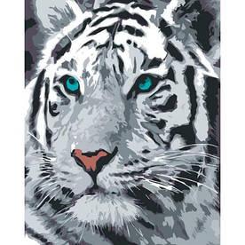 Картина по номерам (рисование по цифрам, живопись) 0001Т1 (Белый Тигр)