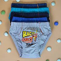 Детские трусы плавки для мальчика Nicoletta (возраст: 3, 5-6 лет)   5 шт.