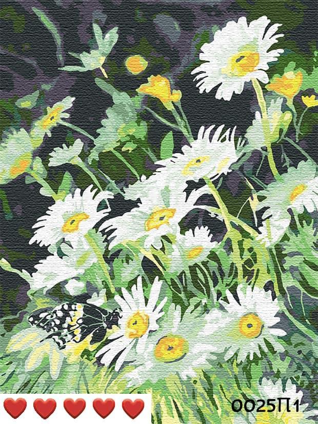 Картина по номерам (рисование по цифрам, живопись) 0025П1 (Ромашки в поле)