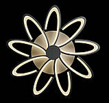 Люстра светодиодная Splendid-Ray 30-3901-15, фото 5