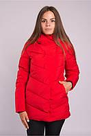 Женская куртка Avecs Р. 42 44 48 50 52, фото 1