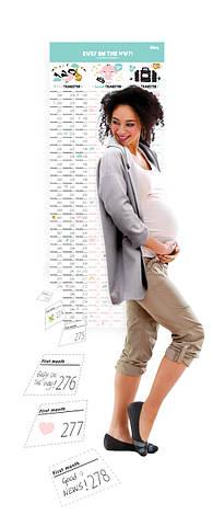 Календарь беременности, фото 2