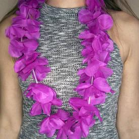 Гавайські леї Орхідеї (малинові)