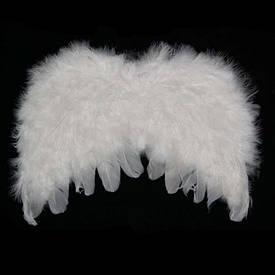 Крила Ангела Дитячі 22х32см (білі)