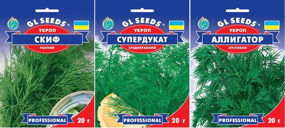 Насіння Кропу   (20г), Professional, TM GL Seeds