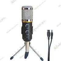 Студийный конденсаторный микрофон MK-F200TL (MK-F100TL, BM-300FX, BM-100FX) + аксессуары, фото 1