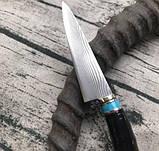 Нож коллекционный Дамаск XCD188, фото 3
