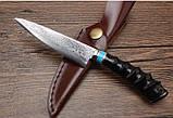Нож коллекционный Дамаск XCD188, фото 4