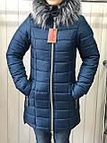 Куртка жіноча зимова Парку Софі, фото 3
