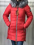 Куртка жіноча зимова Парку Софі, фото 6