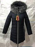 Куртка жіноча зимова Парку Софі, фото 9