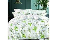 Комплект постельного белья полуторный Вилюта Ранфорс 19015