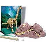 Набор для раскопок 4M Скелет брахиозавра (00-03237), фото 2