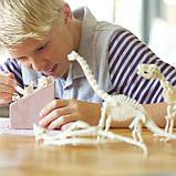 Набор для раскопок 4M Скелет брахиозавра (00-03237), фото 6