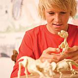 Набор для раскопок 4M Скелет брахиозавра (00-03237), фото 8
