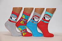 Женские носки махровые Стиль люкс Ж30   Ж30-129